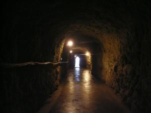 島崎酒造洞窟内
